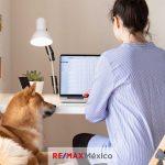 Si estás buscando una casa o departamento, y tienes mascota, debes tener mucho cuidado