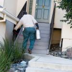 ¿Por qué es importante el mantenimiento contra plagas en tu hogar?